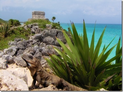 Travel Photography for your next Yucatan Holiday