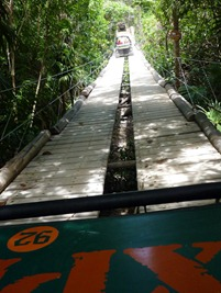 The amphibious vehicles in the jungle!
